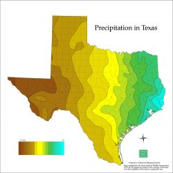 Precipitation in Texas