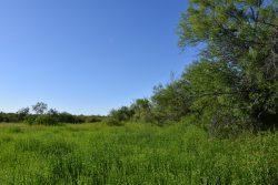 Photo of Prairie Canyon Ranch