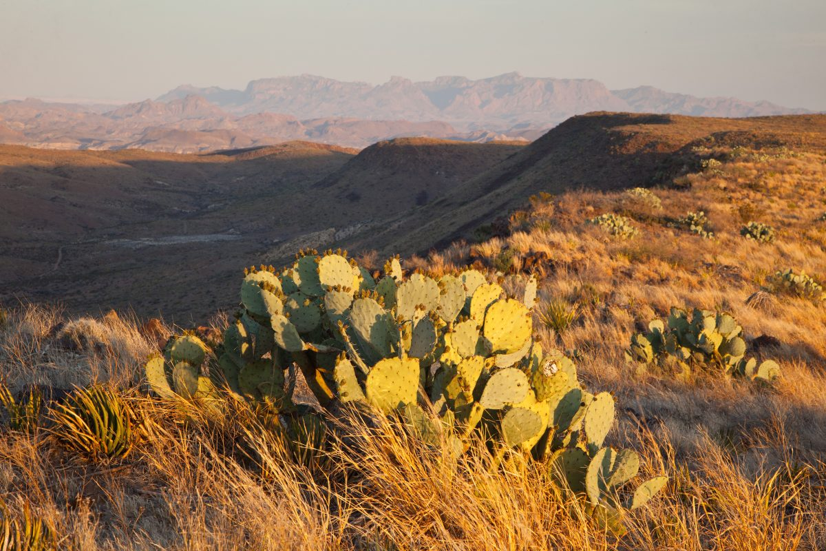 Photo of Agua Fria Ranch