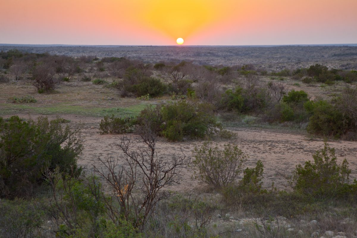 Photo of Edwards Draw Ranch