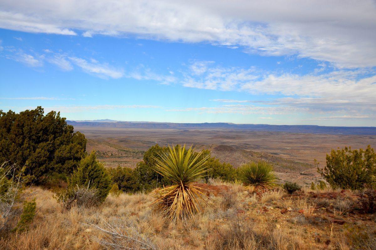 Photo of HLB Piñon Ranch