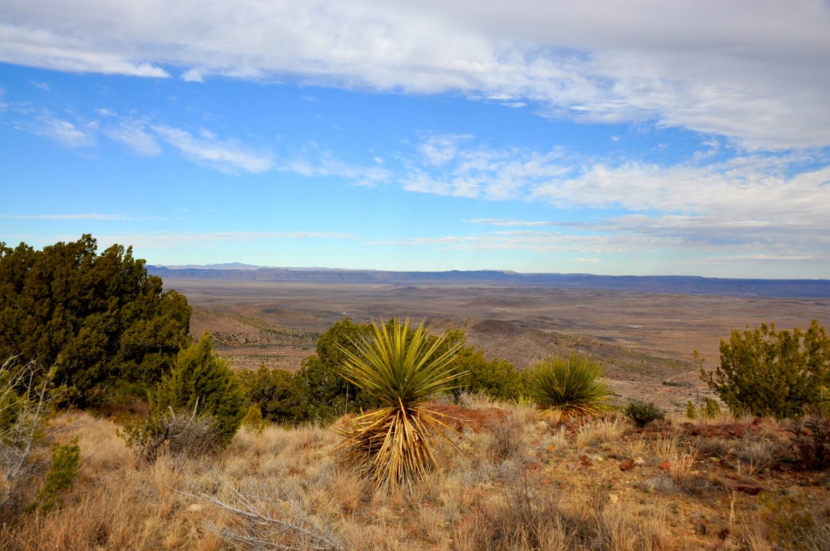 Photo of HLB Piñon Ranch