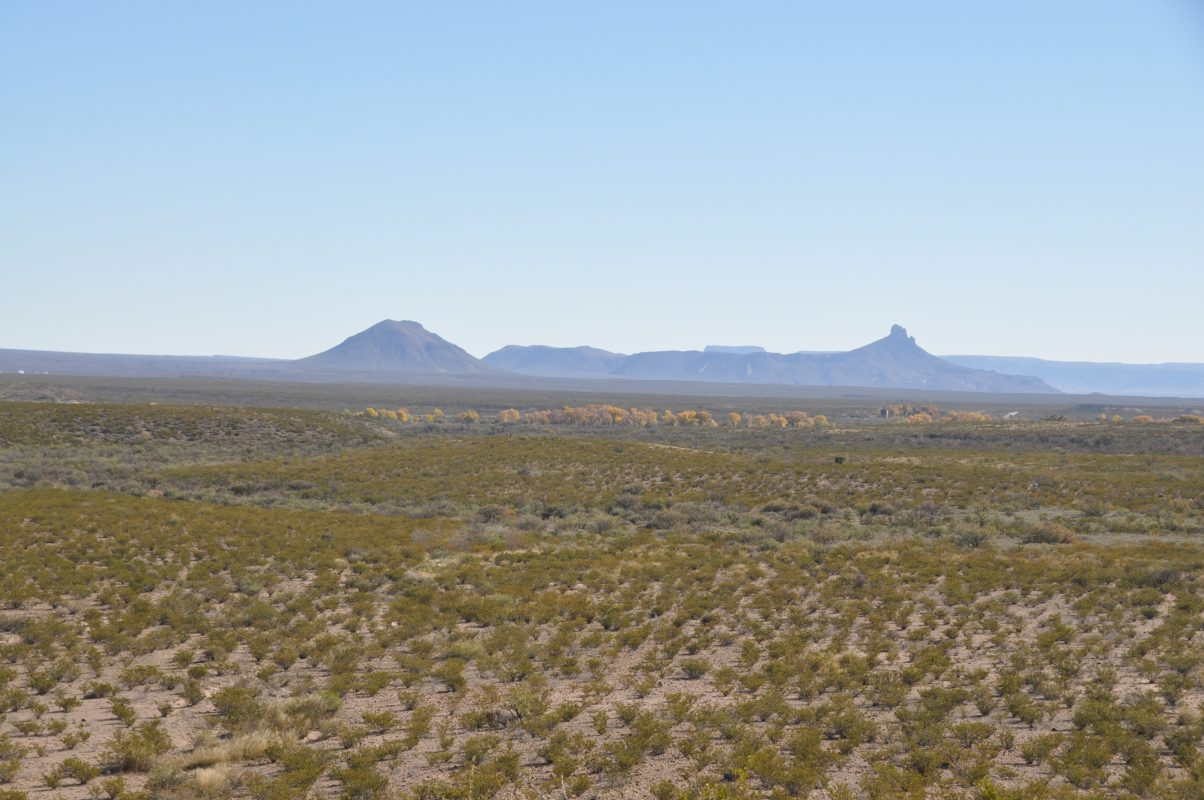 Photo of South Alamito Ranch, creosote scrubland with view of mountains