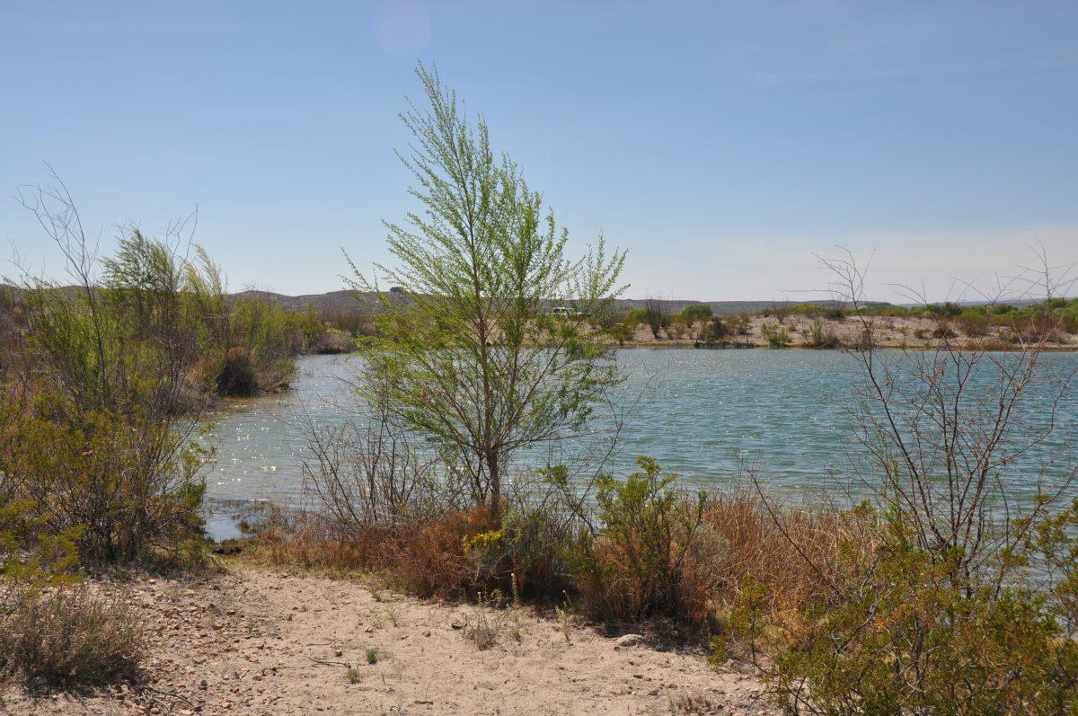 Photo of Alamito Waters Ranch, along the lake shore