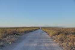 Photo of Coyanosa Draw Ranch, caliche road