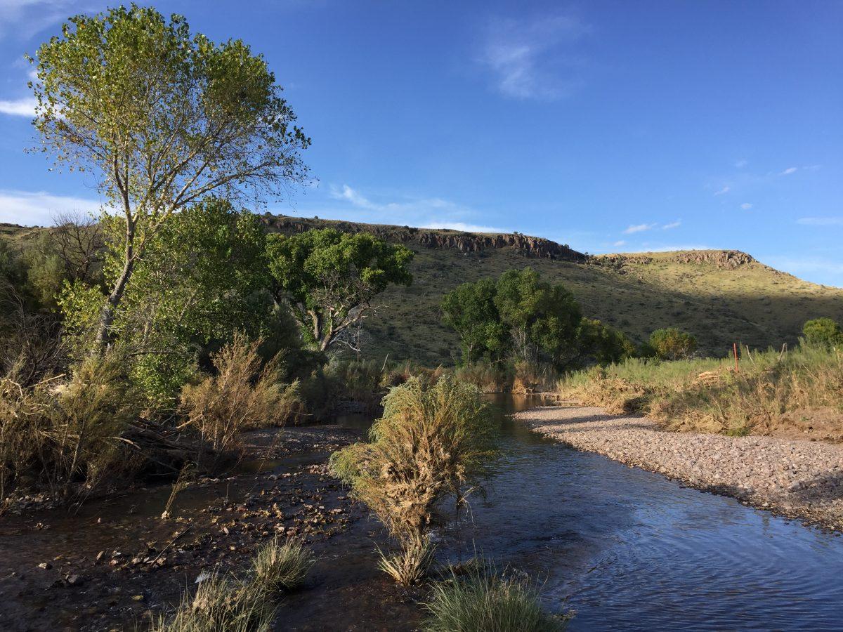 Photo of Maya's Creek Crossing