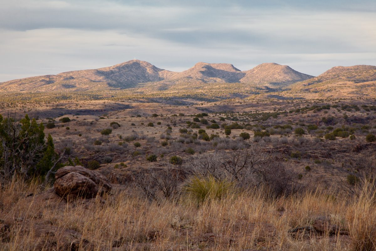 Photo of Panther Rock Ranch