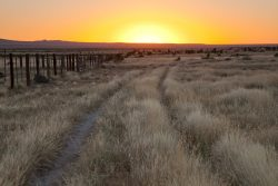 Photo of Quebec Ranch, grassland and fence with ranch road at sunrise