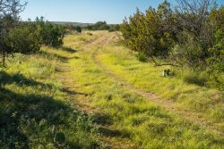 Photo of Rock House Draw Ranch, ranch road