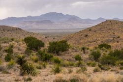 Photo of Black Hills Ranch, view of Chinati Peak from Cerros Prietos