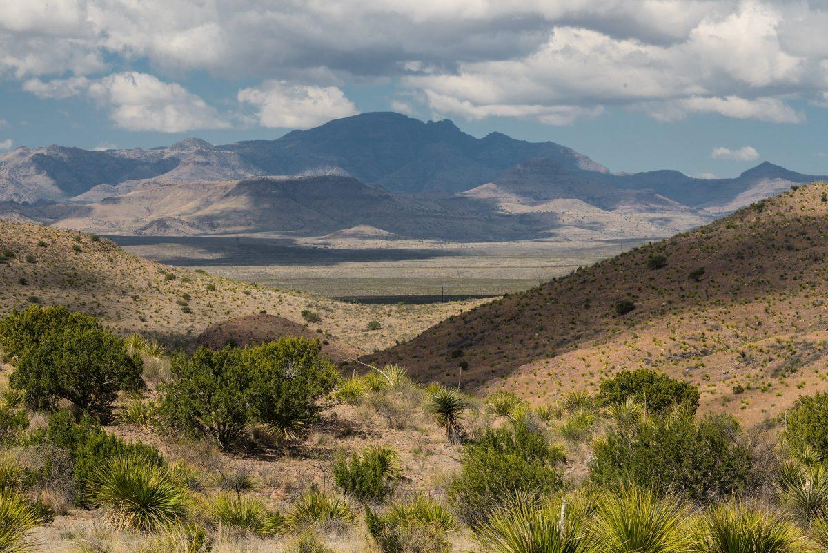 Photo of Black Hills Ranch, Cerros Prietos, juniper trees