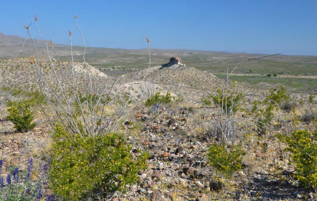 Photo of Berry Ranch, desert hills