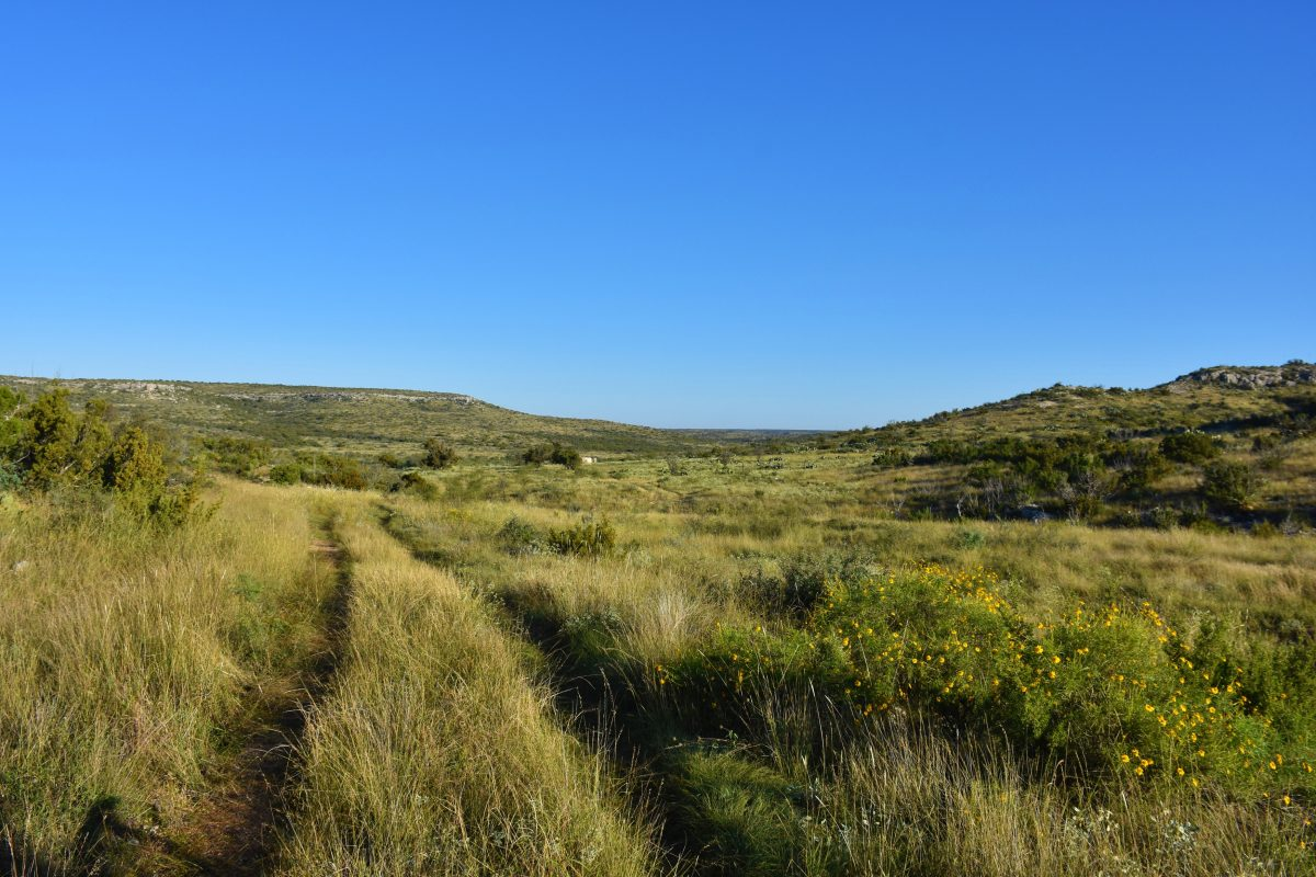 Photo of High Mesa Ranch, grassland with ranch road